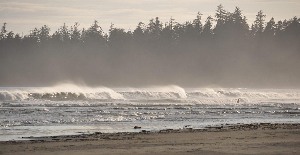 surf-canada