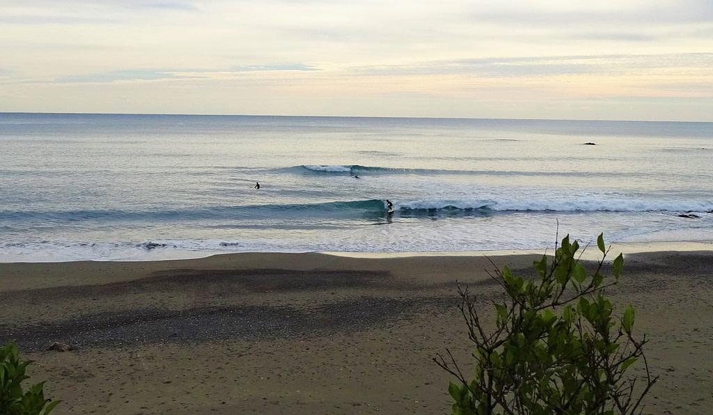 surf japon